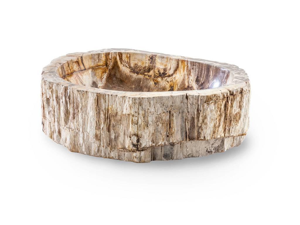 stone_tree_lavabo_da_appoggio_legno_fossile_pietrificato